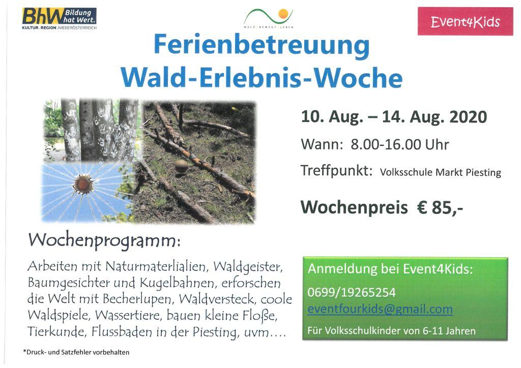 Wald-Erlebnis-Woche